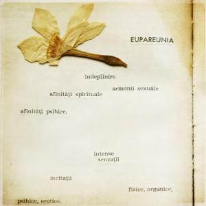 Eupareunia, dokonalé milenecké propojení